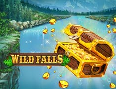 Wild Falls logo