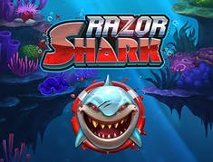 Razor Shark logo