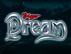 Bingo Dream logo