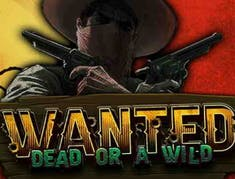 Wanted Dead or a Wild logo