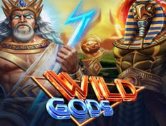 Wild Gods logo
